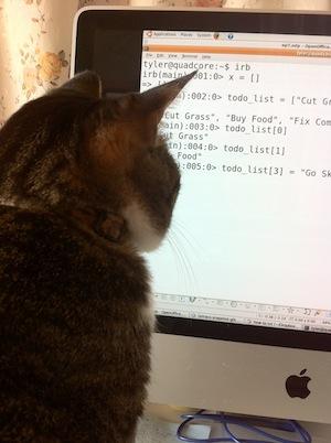 猫 Ruby始めました