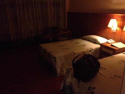 ミャンマーPanda hotel