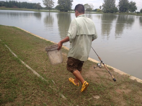釣り タイ