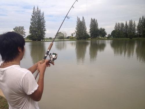 タイ 巨大魚釣り