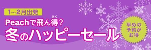 img_wintersale.jpg