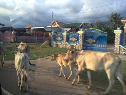カンボジア・シアヌークビルの丘の上にそびえ立つ「ホテル & スパ ビクトリー キャッスル ヴィラ」に宿泊してきた。