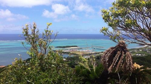 明日から沖縄でノマドしてきます。やる事リスト